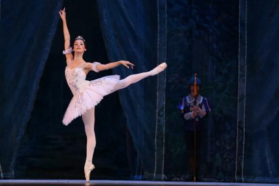 Vom 16. Dezember 2020 bis 30. Januar 2021 wird das Ballett Dornröschen russischer Tänzer aus St. Petersburg in Deutschland gezeigt, Tickets zum Verkauf auf der Website