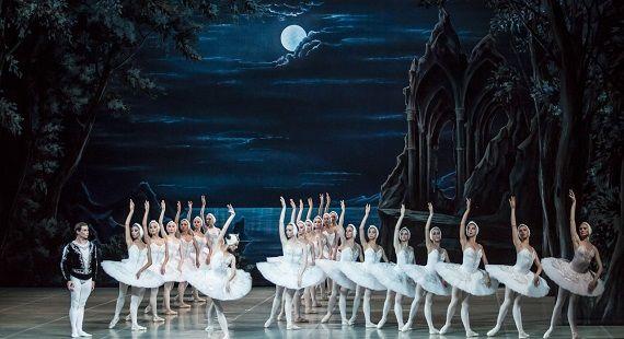 лебединое озеро schwanensee russisches ballett artist production купить билет