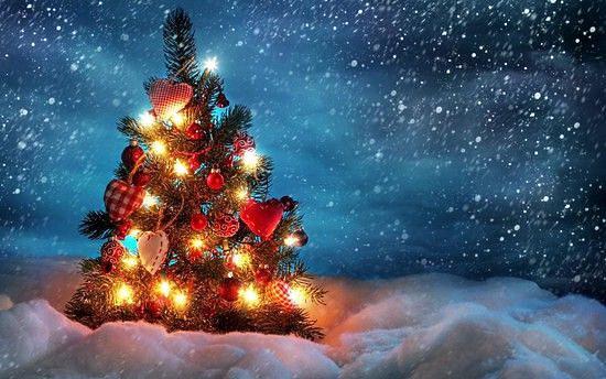 Сказочная Новогодняя Елка от Международного Театра Юного Зрителя